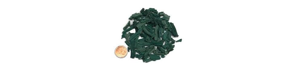 Spirulina chips